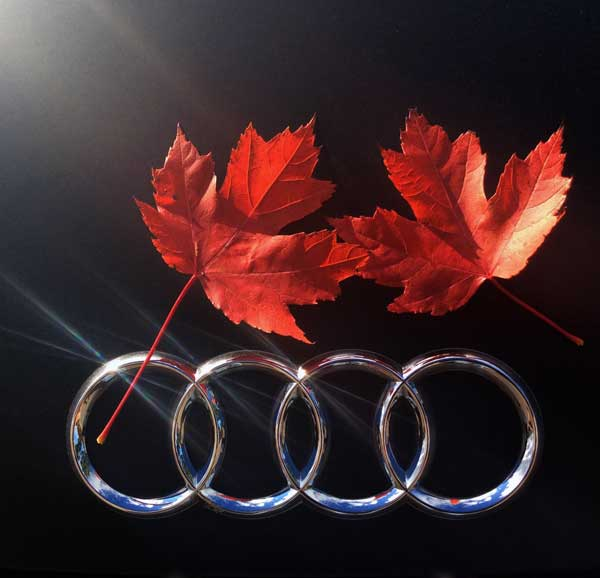 Audi-Logo-Maple-Leafs_600