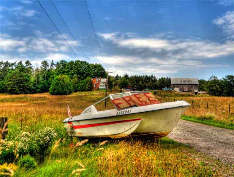 Free Boat-800