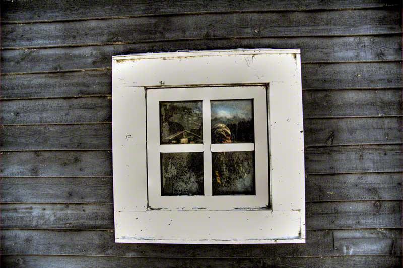 Window-800