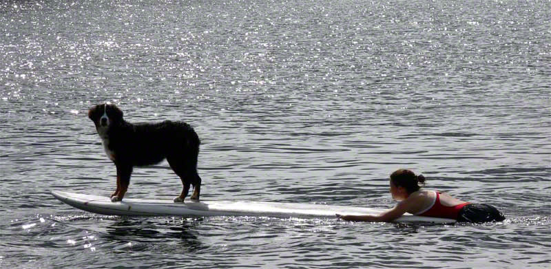 Girl and Dog in Muskoka
